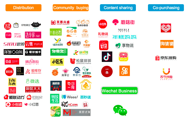China social e-commerce category overview